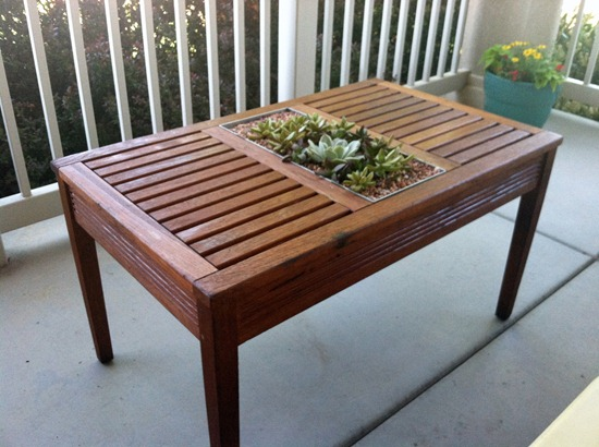 succulent_table
